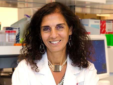 Des chercheurs canadiens découvrent les origines précoces insoupçonnées du cancer du cerveau chez l'enfant
